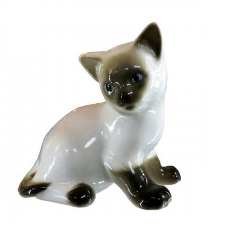 Котёнок Парамоша Сиамский