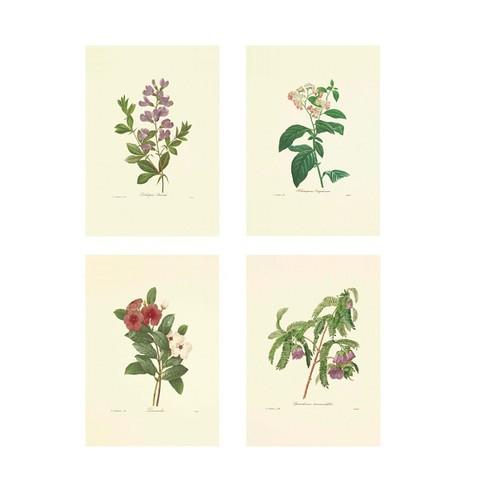 Постер Цветы полевые